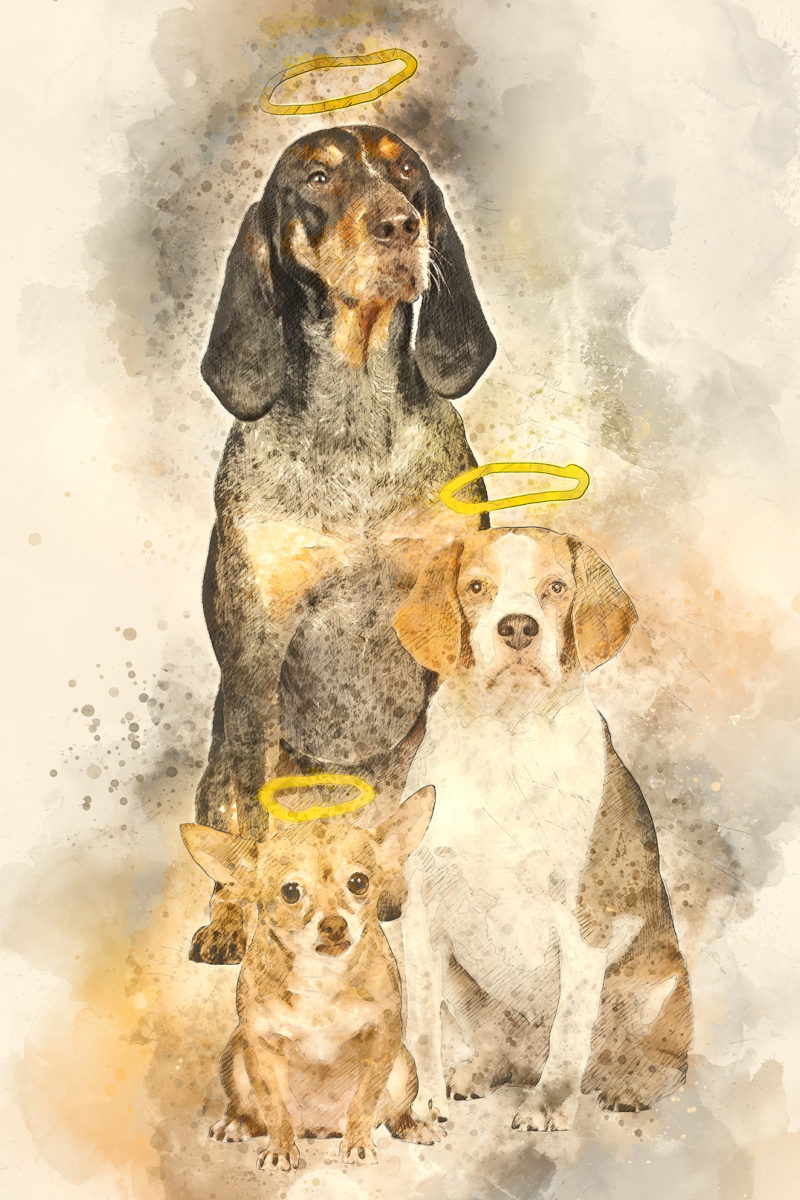 A dog photograph turned into a watercolor painting.