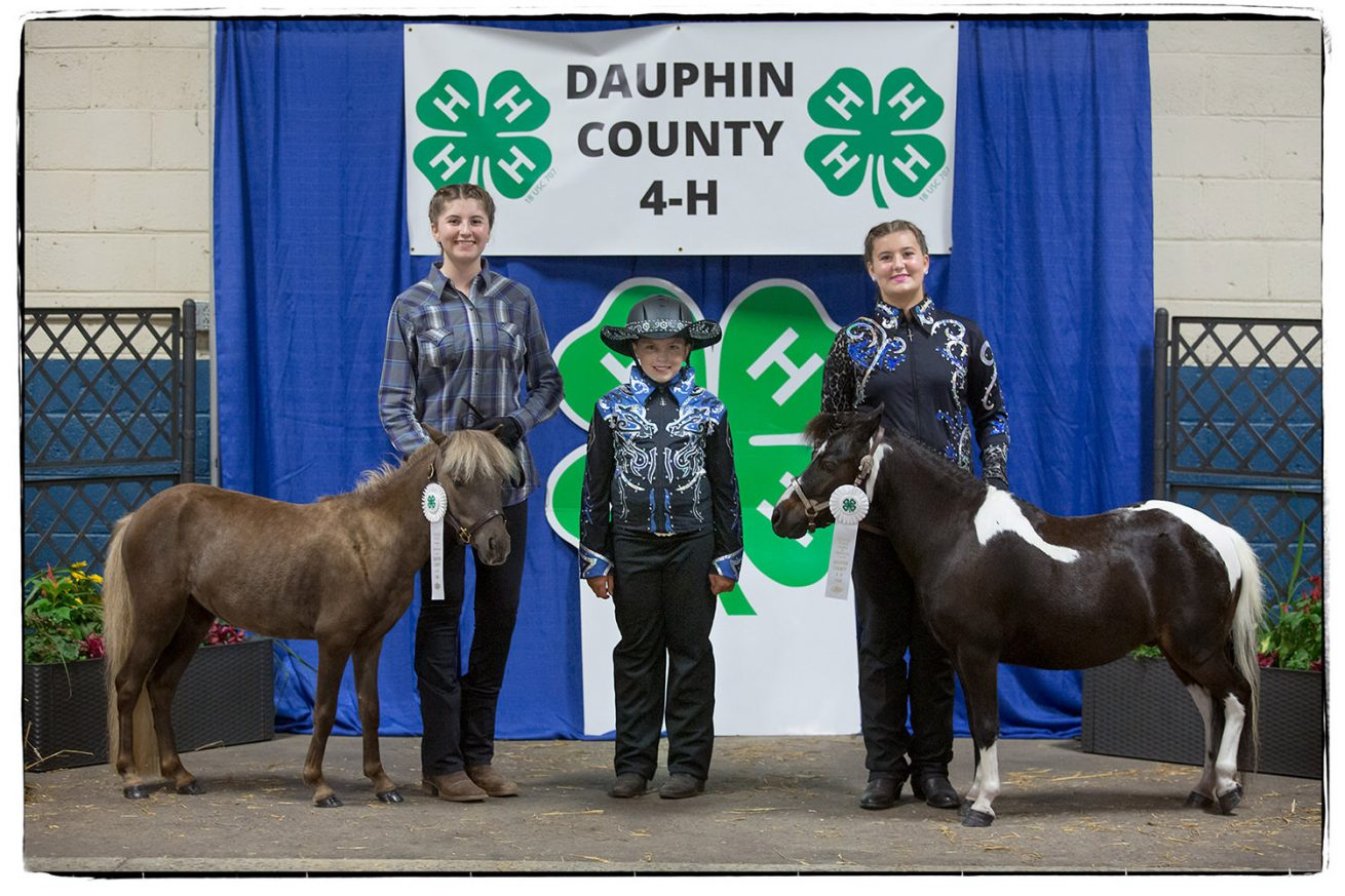 Dauphin County 4H show