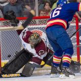 Hershey Bears vs the Norfolk Admirals
